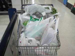 Plastic bag free day! 1