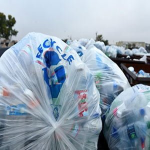 Plastic bag free day! 6